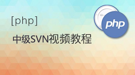 PHP中级教程SVN视频教程