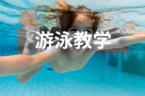 游泳视频教学精讲